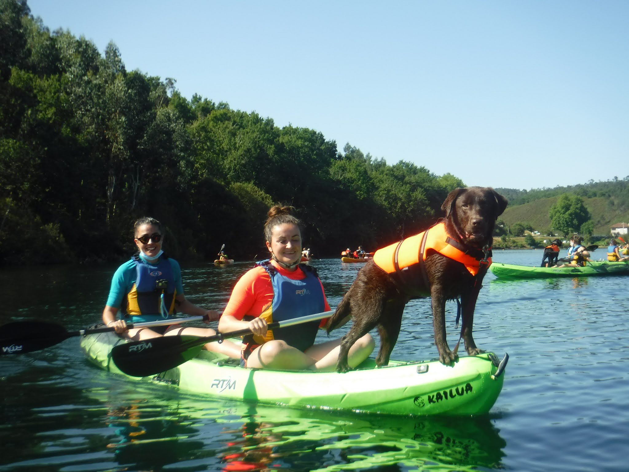 Kayakan kayak con mascota